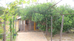 Casa Cajueiro